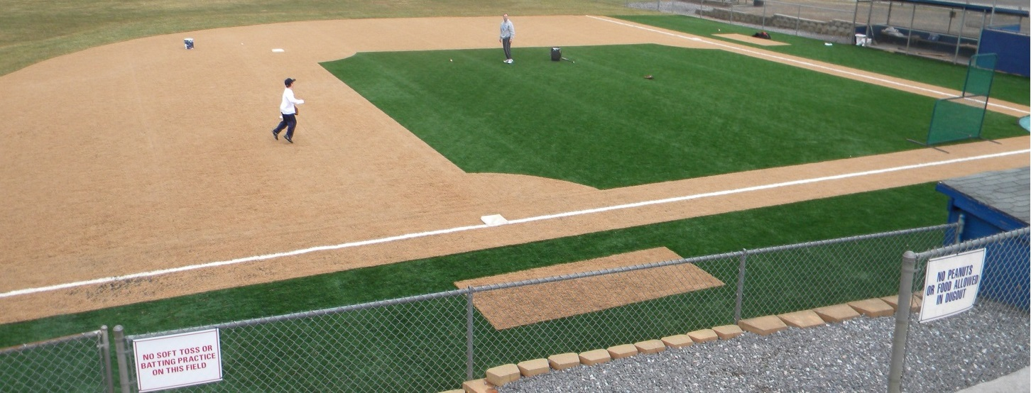 Field 3a